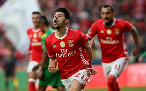 Football - Championnat du Portugal - Benfica Lisbonne vs Desportivo Aves [Live]