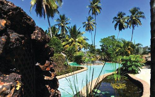 Bliss - Goa, india